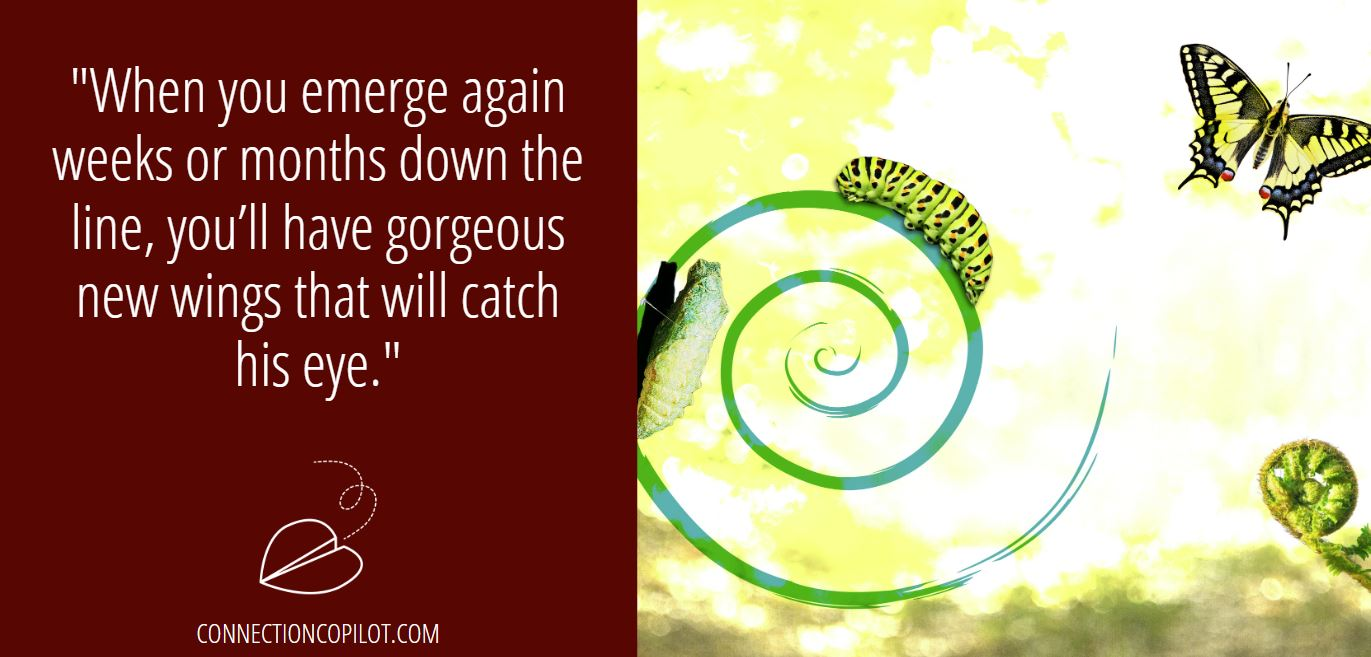 """""""When you emerge again weeks or months down the line, you'll have gorgeous new wings that will catch his eye."""""""